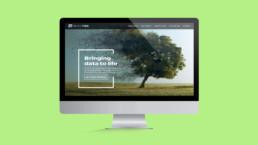 Bridgetree Website Design